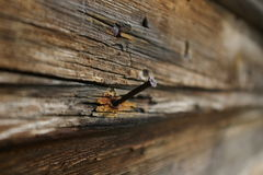 Rusty Nail. Old nail in the wall of an old stable Stock Photography