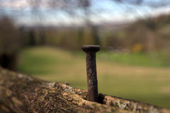 Rusty nail on a fence Royalty Free Stock Photos