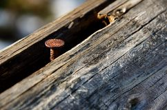 Rusty nail Stock Photo