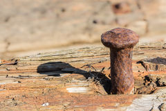 Rusty nail in rotten wood. Royalty Free Stock Photos