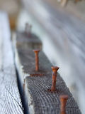 Rusty nail in wood. Rusty nail in old wood royalty free stock image