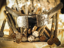 Rusty nails. Close up Rusty nails with copyspace soft light Stock Photo