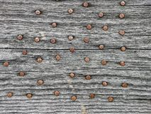 Rusty nails in aged pine wood board close up shot. Image for background stock photo