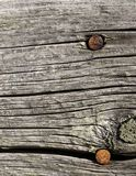 Rusty Nails on Barn Board Royalty Free Stock Image