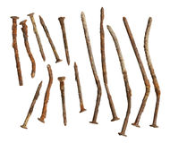 Rusty nails collection Stock Image