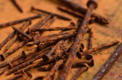 Rusty nails. Group of rusty nails laying on a rusted surface Stock Images