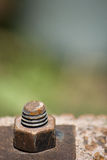 Rusty Nut and Screw Royalty Free Stock Photos