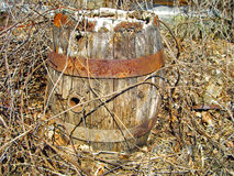 Rusty Old barrel. Old rum barrel in the woods Stock Images