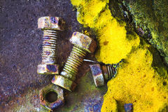 Rusty Old Bolts And An Old Polyurethane Foam Stock Photo