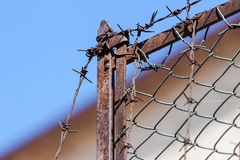 Rusty old fences of barb wire Stock Image