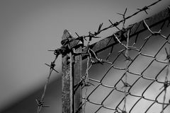 Rusty old fences of barb wire Stock Photo