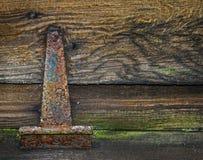 Rusty old hinge. Royalty Free Stock Photo