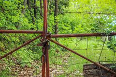 Rusty Old Locked Gate in Nature stock image