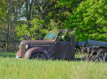 Rusty old truck with tree Royalty Free Stock Image