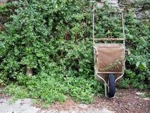 Rusty old wheelbarrow against wall, plants. Stock Image