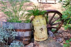 Rusty yellow farm jug used as a planter with a wagon wheel background Stock Photography