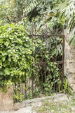 Rusty overgrown gate Rhodes old town Stock Images