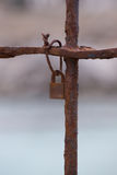 Rusty padlock attached to a gate Stock Image