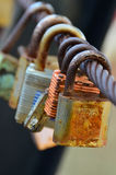 Rusty padlocks. On the chain Royalty Free Stock Image