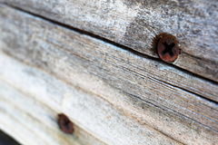 Rusty phillips screws in aging wood. Rusty Phillips screws in cracked, aging wood that angles off into the background Stock Image