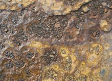 Rusty plate Royalty Free Stock Photos