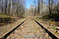 Rusty rails of the abandoned railroad in the forest. Perspective view royalty free stock images