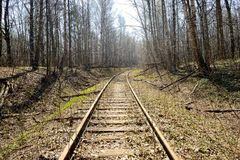 Rusty rails of the abandoned railroad in the forest. Perspective view stock photos