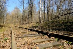 Rusty rails of the abandoned railroad in the forest. Perspective view stock photo