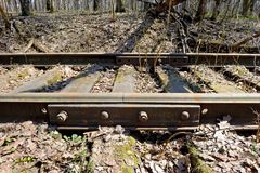 Rusty rails of the abandoned railroad in the forest. Perspective view royalty free stock image