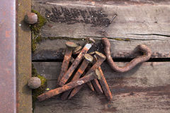 Rusty railway spikes Stock Images