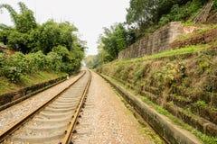 Rusty railway in verdant green on sunny day Royalty Free Stock Photo