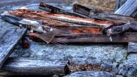 Rusty rake Stock Photo