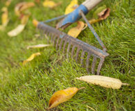Rusty rake Stock Photography