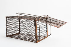 Rusty rat cage royalty free stock photo
