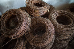 The rusty rings of an old barbed wire. Royalty Free Stock Photos