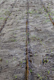 Rusty rods hard moist sand Texture lines Stock Photo