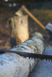 Rusty saw and axe Royalty Free Stock Photos