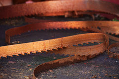 Rusty saw blade Royalty Free Stock Image