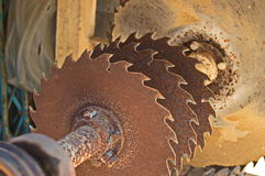Rusty sawblades Royalty Free Stock Photography