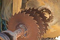 Rusty sawblades Royalty Free Stock Photography