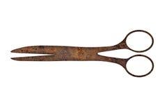 Rusty scissors Royalty Free Stock Image