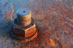 Rusty screw head Stock Image