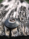 Rusty screw in old wood. Macro shot of rusty screw in piece of old wood Royalty Free Stock Images
