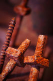Rusty Screws Royalty Free Stock Photography