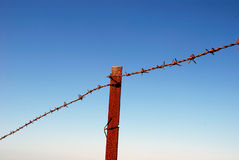 Rusty security. Fragment of rusty barbed wire on blue sky background Stock Images