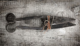 Rusty sheering scissors Royalty Free Stock Image