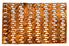 Rusty spike plate  on white. Stock Photos