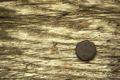 Rusty steel pin. Aged tree Royalty Free Stock Image