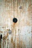 Rusty tack on the old wooden door in Susak Stock Images