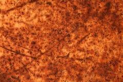 Rusty  Texture Royalty Free Stock Photo
